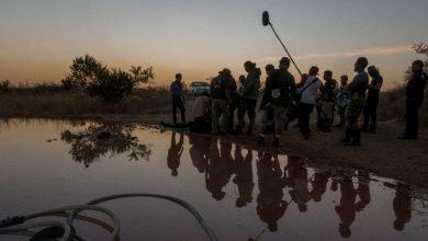 Photo of Guanajuato brilla en la Industria Cinematográfica y Audiovisual