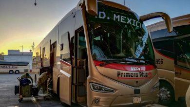 Transporte Primera Plus