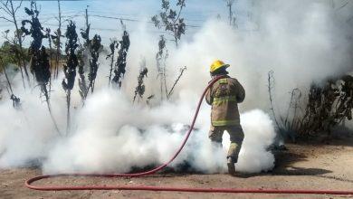 La quema de pastizales aumentó en los primeros 10 meses de este año