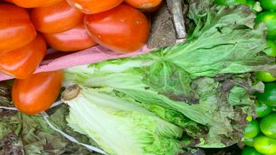 Incrementan precios de verduras por bajas temperaturas