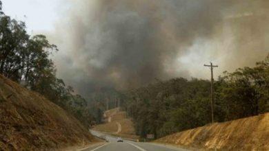 Al arduo trabajo para extinguir los voraces incendios, se sumaron las torrenciales lluvias que pegaron en la costa este de Australia.
