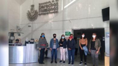 Photo of Periodistas exigen respeto a la libertad de expresión; interponen queja en PDHEG