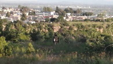 Photo of Muere hombre al caer en Barranca de Venaderos