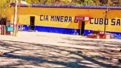 Photo of Mueren intoxicados cuatro 'lupios' en Mina de El Cubo