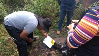 Photo of Jóvenes hallados en fosas de Guanajuato, víctimas de la descomposición social: AMLO