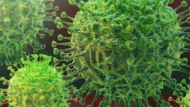 Photo of Hallan molécula que podría 'destruir' al coronavirus