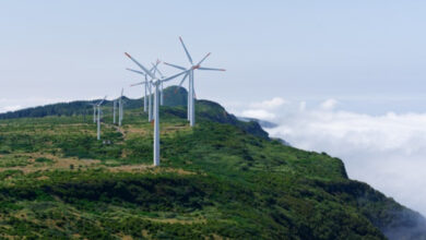 Photo of Protege SCJN a Guanajuato de medidas contra energías renovables
