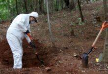 Photo of Crece número de víctimas halladas en 'cementerio' de Salvatierra