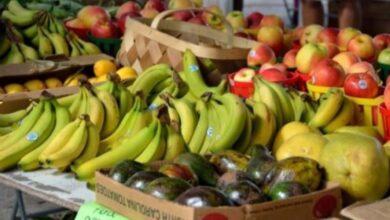 Photo of Solo el 56% de los hogares en México comen a diario frutas y verduras