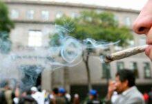 Photo of Panistas se oponen a aumentar la dosis para  portar marihuana lúdica