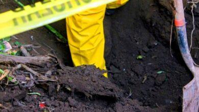 Photo of Piden colectivos intervención de forenses nacionales e internacionales en Guanajuato