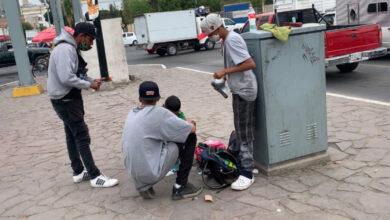 Photo of Guanajuato registra hasta un 13% de trabajo infantil